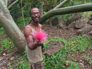 Pippo_MuseeGraine_Guadeloupe-754804