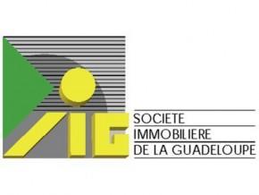 Délègues Conseil Municipal représentant la commune au Conseil d'Administration de la SIG