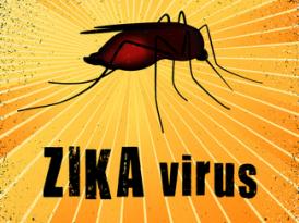 Virus Zika, premier bilan