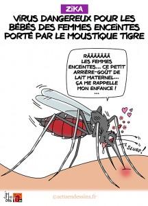 ob_3f8e41_virus-zika-jm
