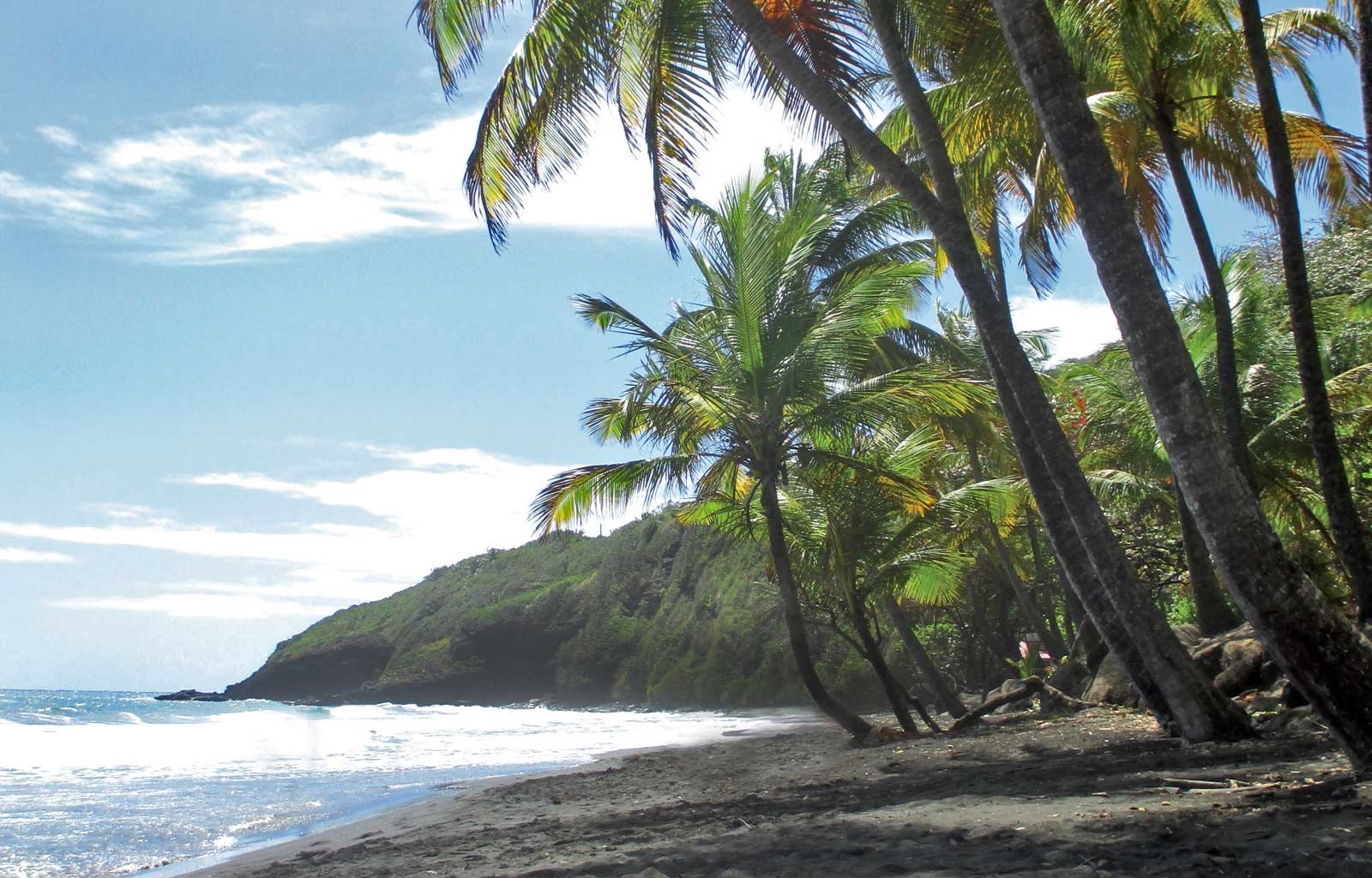 3205_TROIS-RIVIERES-PLAGE-GRANDE-ANSE-GUADELOUPE