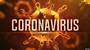 Coronavirus : un guide pratique pour vous aider